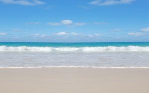 sunshine coast kinesiology